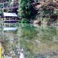 山元に於ける水質調査
