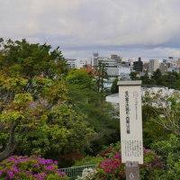 冬の晴れている日は富士山が見えるんでしょうね!