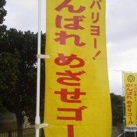 石垣島マラソンの朝