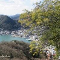 小豆島と日生諸島を望む * ミモザ咲く港の見える丘公園より