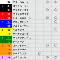 3/12【フィリーズR[GⅡ]】[3連複]的中!予感