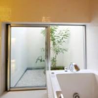 お風呂の植栽