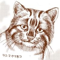【猫の日】 新刊7巻、表紙はこんな感じです。【アンゴルモア 元寇合戦記】