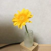 花(ミニマリスト)