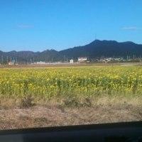 鴨川菜な畑ロード