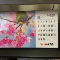 今年も沖縄行かなかったけど「2017JTAカレンダー「美ら島物語」」