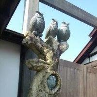 掛川花鳥園。