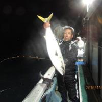11月24日の釣果の写真