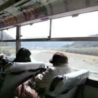 路線バスとタクシーで行く郷里の旅 (ビッグひな祭り編1)