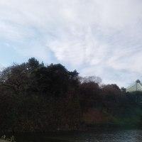 江戸城 清水門から日本武道館を望む 沸き立つ気