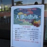 きらきら新緑の軽井沢♪