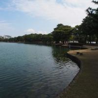 水と緑のオアシス 大濠公園(中之島) 4