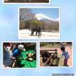 富士サファリパークとこどもの国