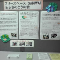 6/4~7/2、奈良市はぐくみセンターの1階でパネル展示しています。
