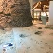 琵琶湖博物館2017