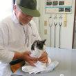 キキが狩野動物病院で歯石をとってもらいました。大事ないみたい、よかったです…