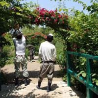 参議院国土交通委員会で足立敏之議員が北川村モネの庭マルモッタンを取りあげてくれたこと