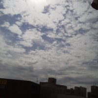 2017/6/27(火) 午前8時半過ぎ札幌の空模様  やっと晴れたー\(^^)/