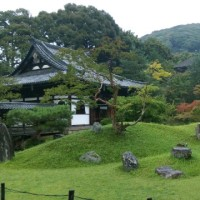 高台寺に行ってきました