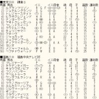 「マイラーズC」「フローラS」&WIN5対象レースのカバラ暗示付き出馬表
