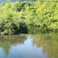 自然湖~♪