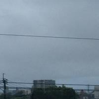 今日の朝雲