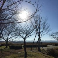 今朝の木場潟