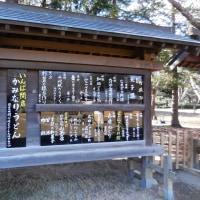 『体験博物館 千葉県立房総のむら』 でなまず料理を体験しました。