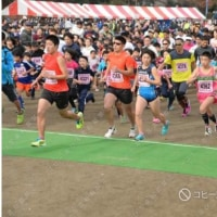 第5回壬生町ゆうがおマラソン大会完走記