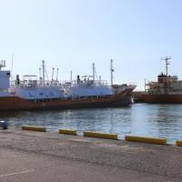 大井川港とサクラエビ