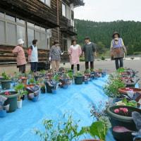 お寺で寄せ植え教室