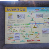 1 神ノ倉山(561m:安佐北区)登山  「桜輝の会」の仲間と