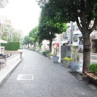 代官山から渋谷へ