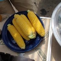 農業実践教室第22期:9回目~鮮やかな夏野菜だらけのランチ