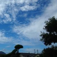 秋の青空・・・10/11