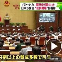 ベトナム政府は原子力発電所の計画を中止すると決めましたね