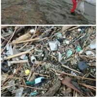 野島 定点観察・海浜清掃
