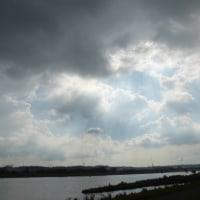あいにくのお天気で…多摩川夏景色シリーズ