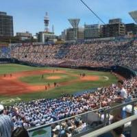 2016年夏  神奈川の夏はというと・・・・