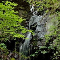 「裏見の滝」(日光市)