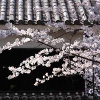 熊本城・不開門
