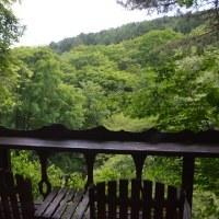 午後の森の風温度は、爽やか21℃。