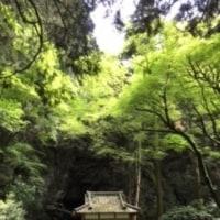 癒しの森~(^^♪