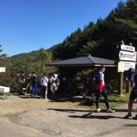 ハイキングクラブ「丸山~大霧山~秩父高原牧場をめぐる」