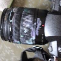 買って数日のカメラなのに銀河ができていた。今度、娘はプラネタリウムでライブをするけど、それと呼応した現象なのだろうか。