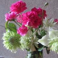 華麗に咲く花と 優雅に咲く花 どっちが お好き?