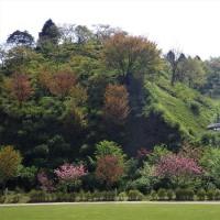 シャクナゲの高取山は公園の後方に隠れていました