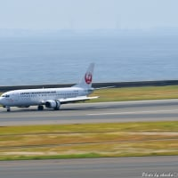 Boeing 737 JAL