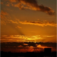 「朝焼と朝焼の中の米軍C5大型輸送機と思われる飛行機雲
