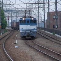 直流電気機関車 EF65-2093【武蔵野線:新座駅】 2017.5.15(8)撮り鉄 車両鉄